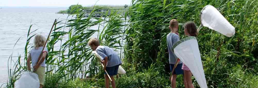 Børne aktivitet ved Vordingborg
